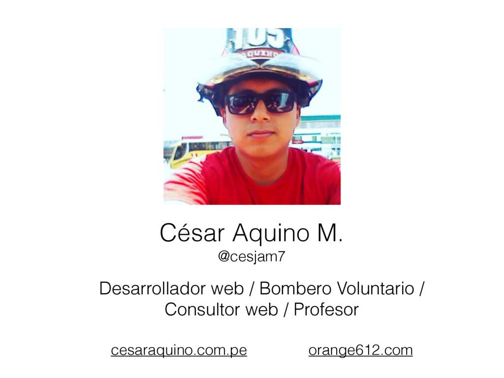 Desarrollador web / Bombero Voluntario / Consul...