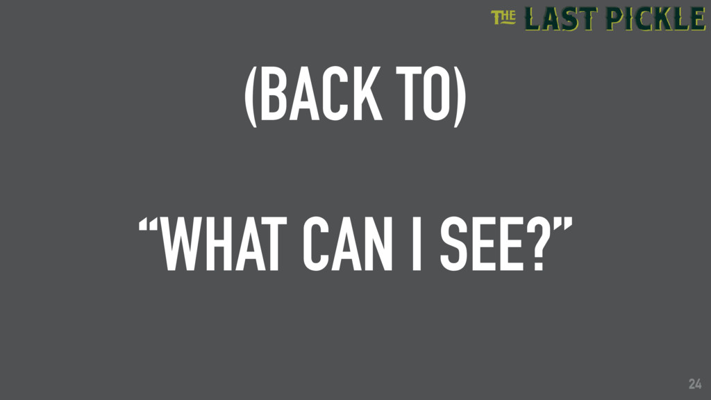 """24 (BACK TO) """"WHAT CAN I SEE?"""" 24"""