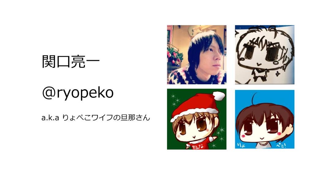 関⼝口亮亮⼀一 @ryopeko a.k.a りょぺこワイフの旦那さん