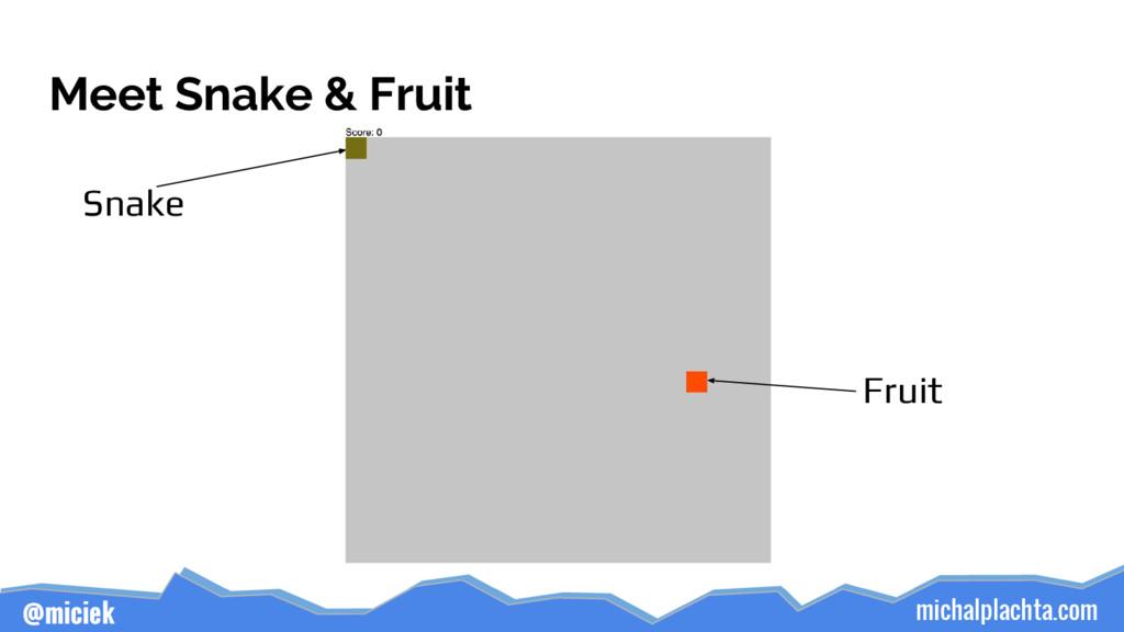 michalplachta.com @miciek Meet Snake & Fruit Sn...