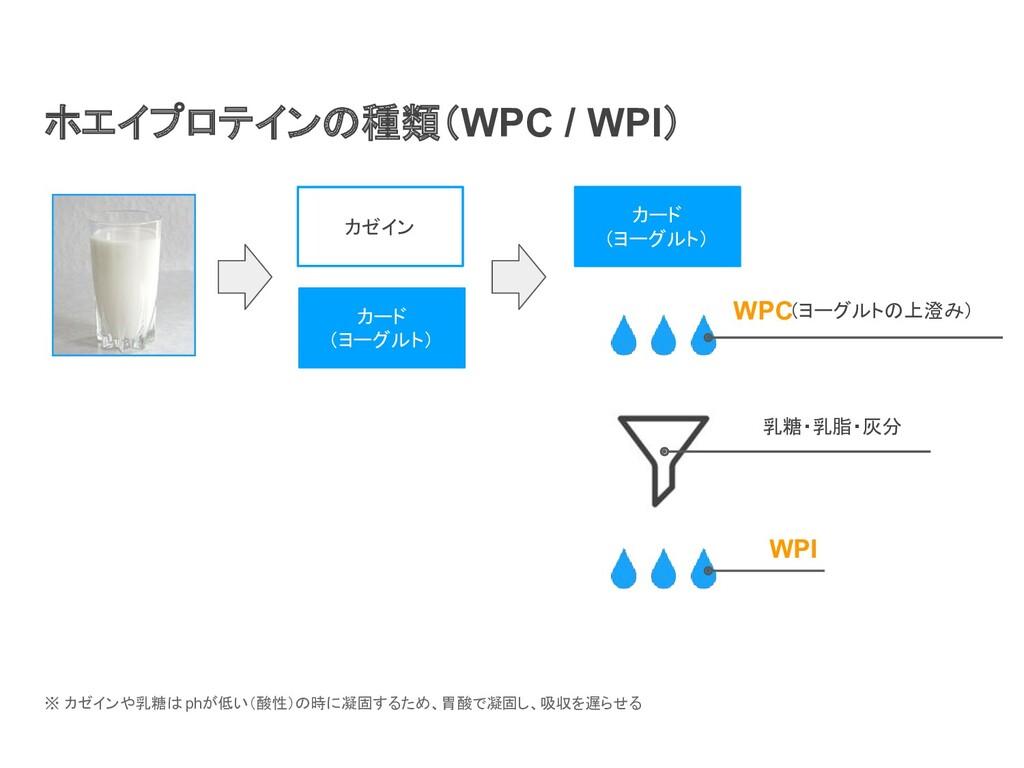 ホエイプロテインの種類(WPC / WPI) カゼイン カード (ヨーグルト) カード (ヨー...