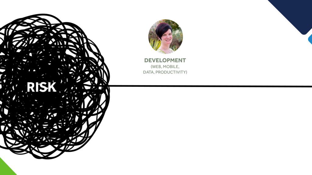 RISK DEVELOPMENT (WEB, MOBILE, DATA, PRODUCTIVI...