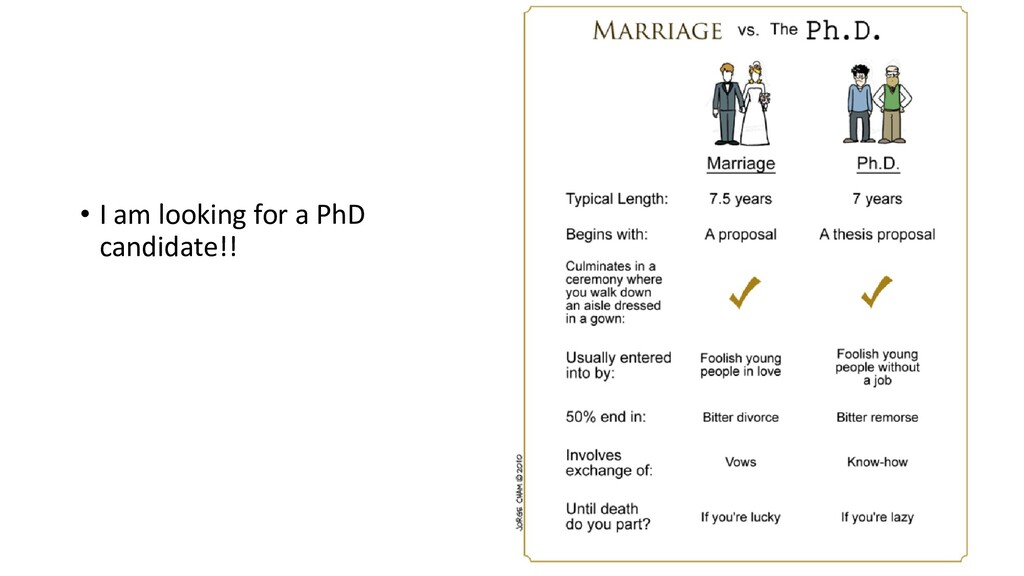 48 • I am looking for a PhD candidate!!