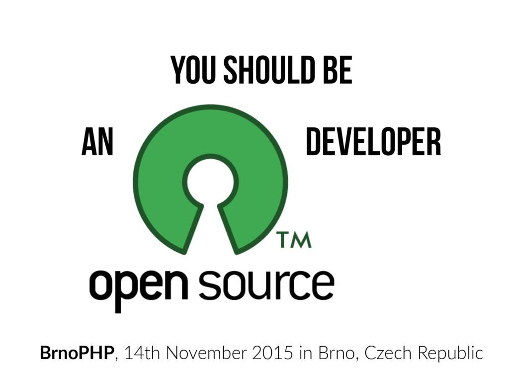 You should be an developer BrnoPHP, 14th Novemb...