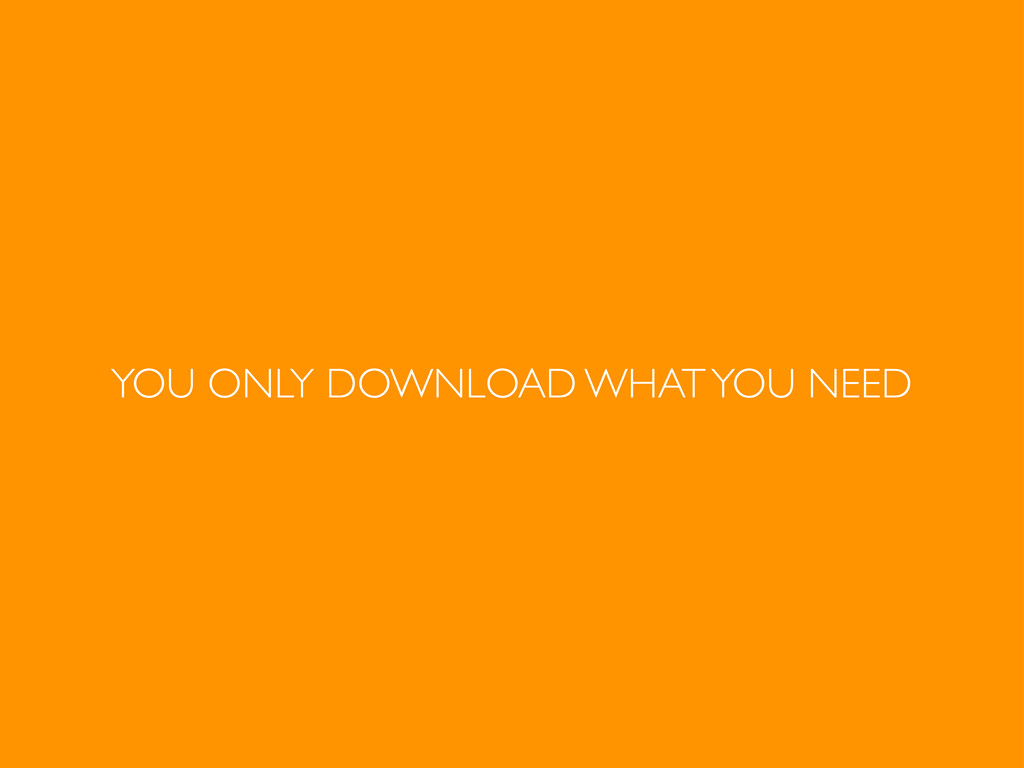 YOU ONLY DOWNLOAD WHAT YOU NEED