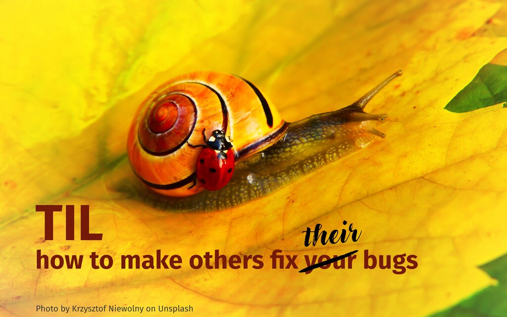TIL how to make others fix your bugs Photo by Kr...
