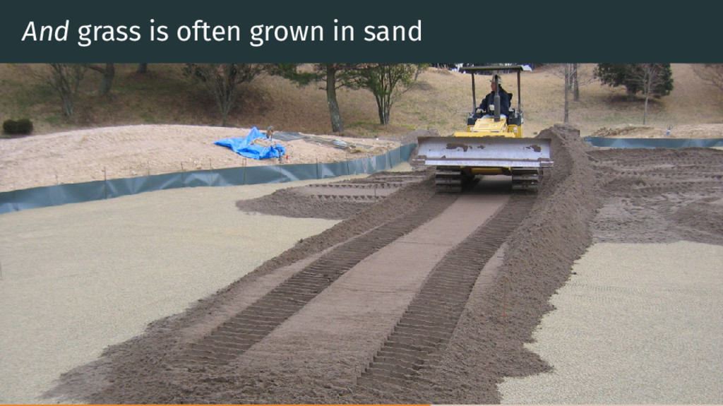 And grass is often grown in sand