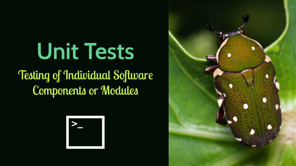 Unit Tests Testing of Individual Software Compo...