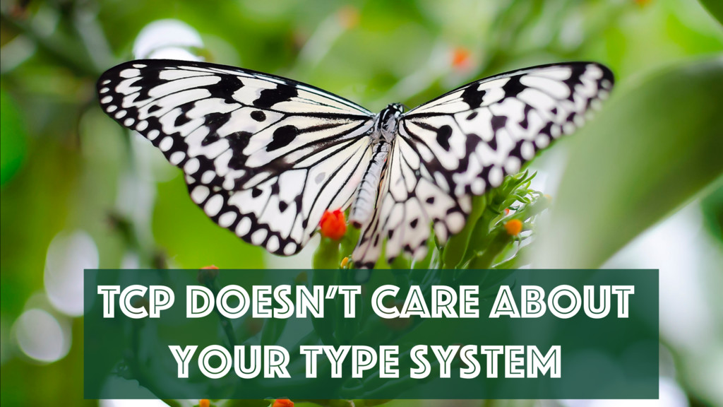 TCP Doesn't Care About Your Type System
