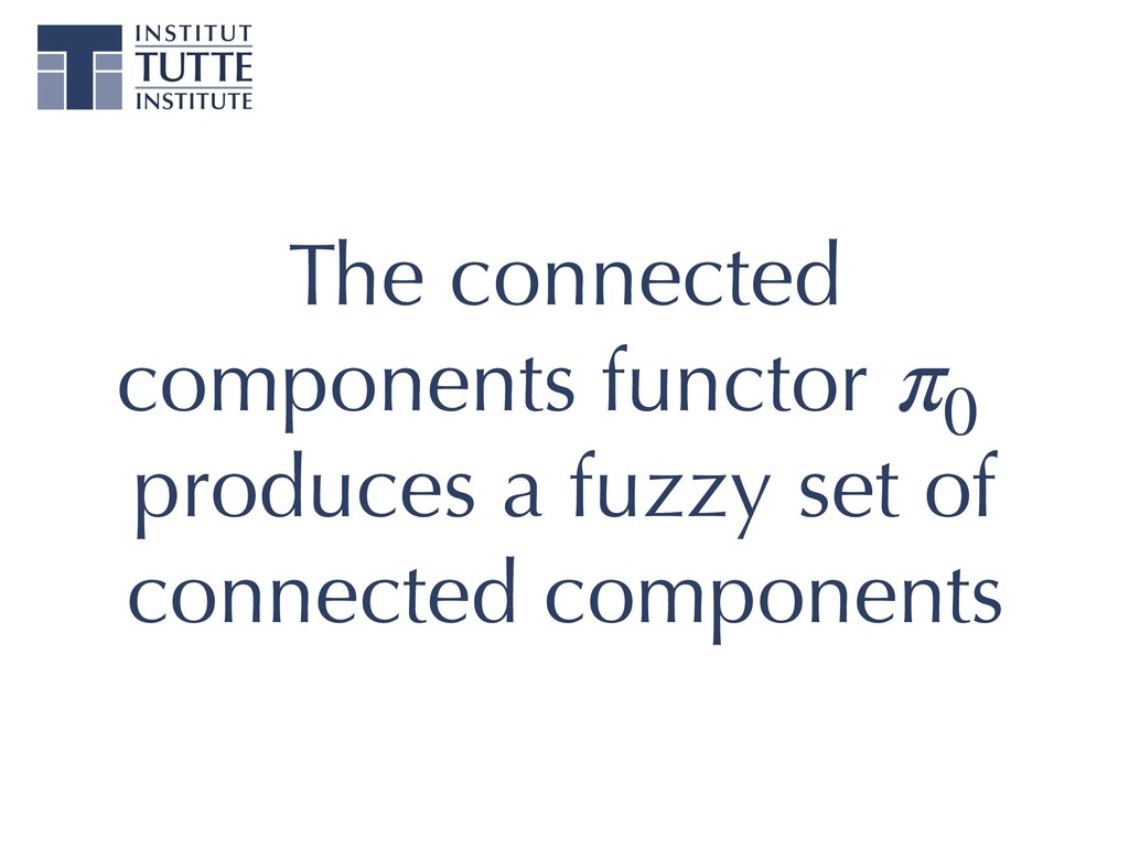 The connected components functor p0 produces a ...