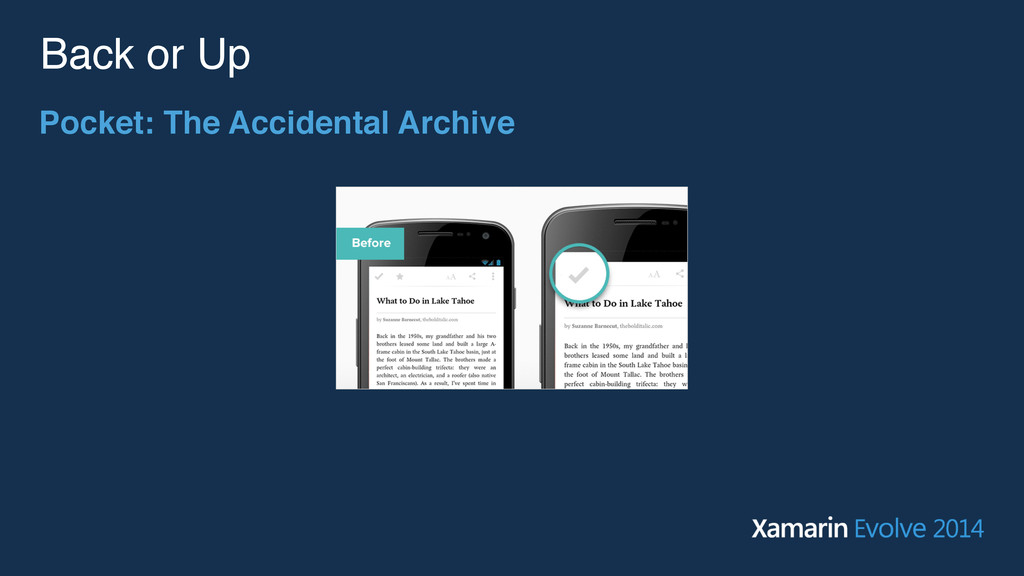 Back or Up Pocket: The Accidental Archive