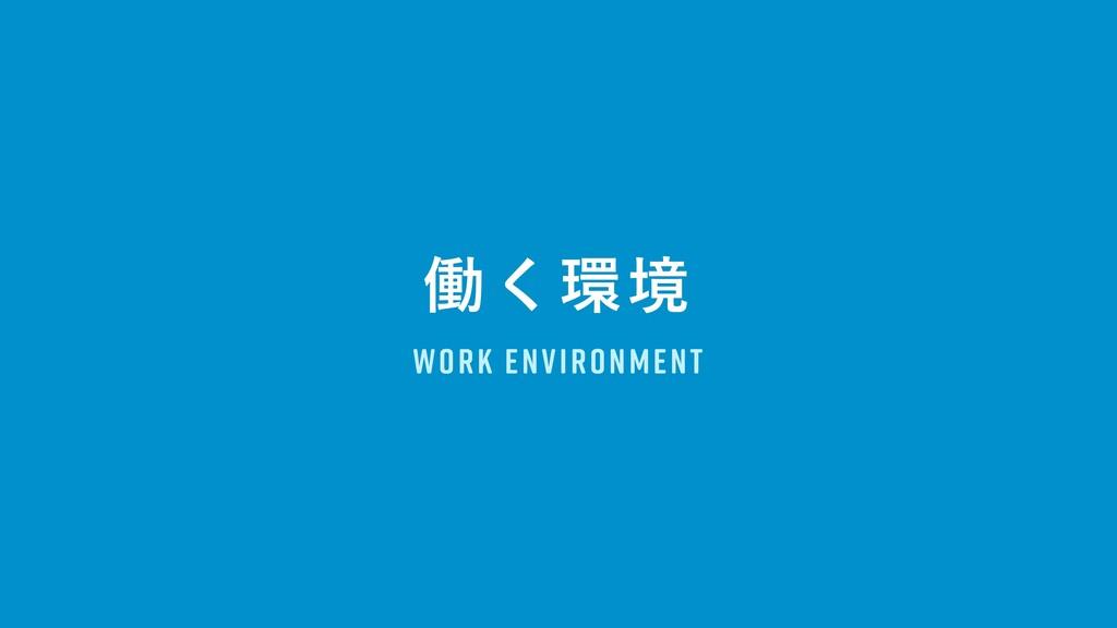 WORK ENVIRONMENT ಇ͘ڥ