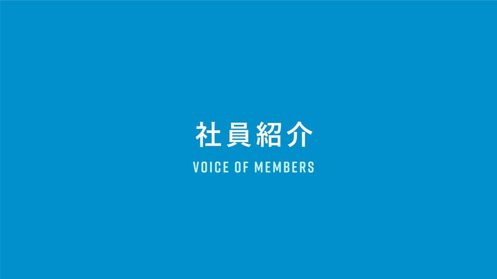 ࣾһհ Voice of Members