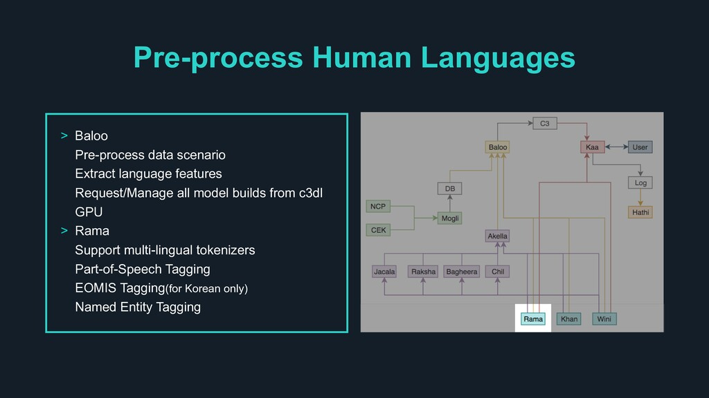 Pre-process Human Languages > Baloo Pre-process...