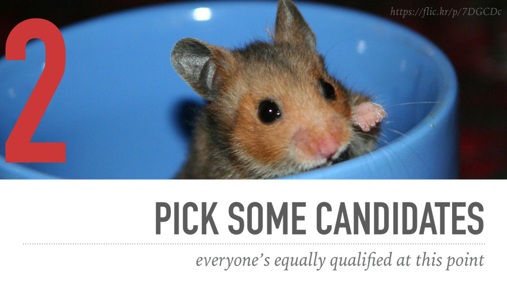PICK SOME CANDIDATES everyone's equally qualifie...