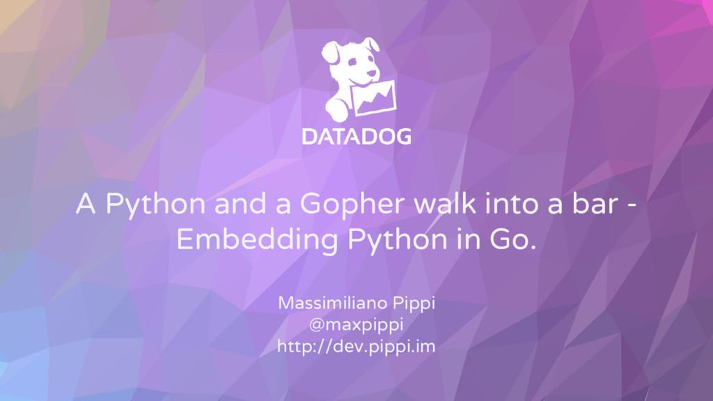 A Python and a Gopher walk into a bar - Embeddi...