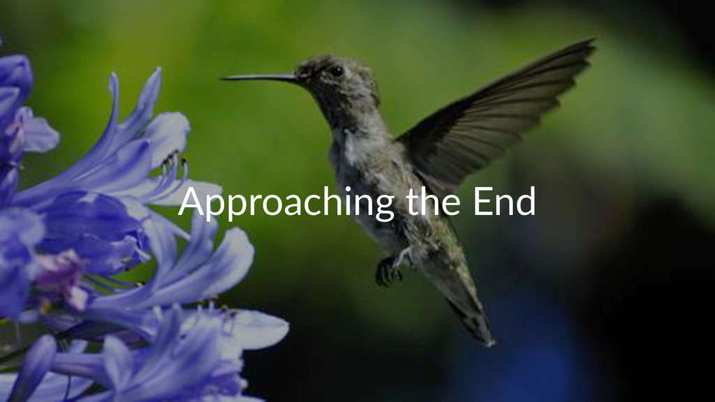 Approaching+the+End