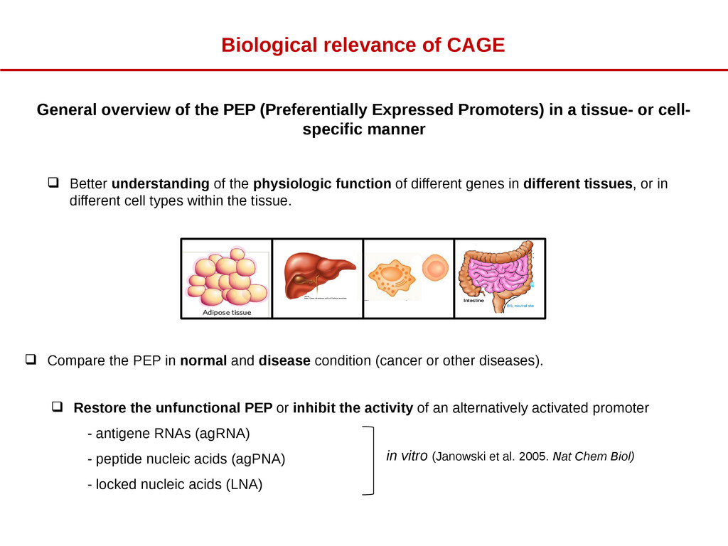  Better understanding of the physiologic funct...