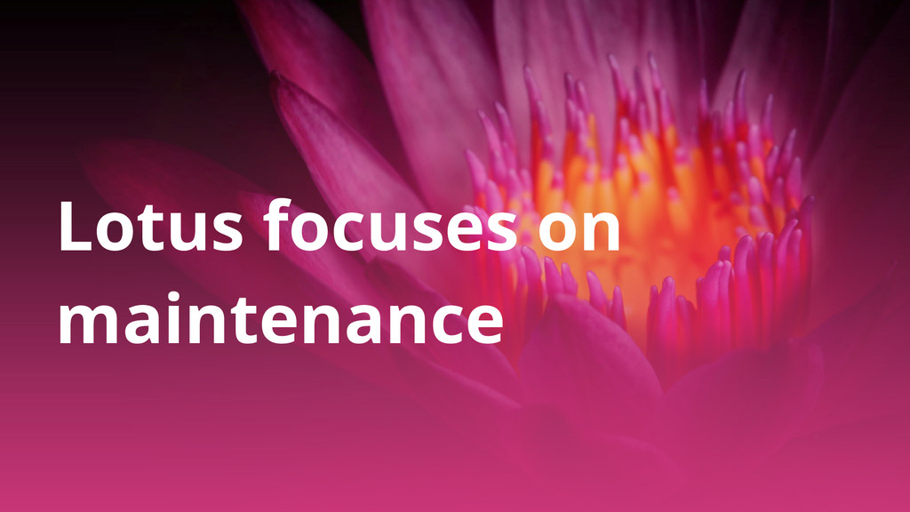 Lotus focuses on maintenance
