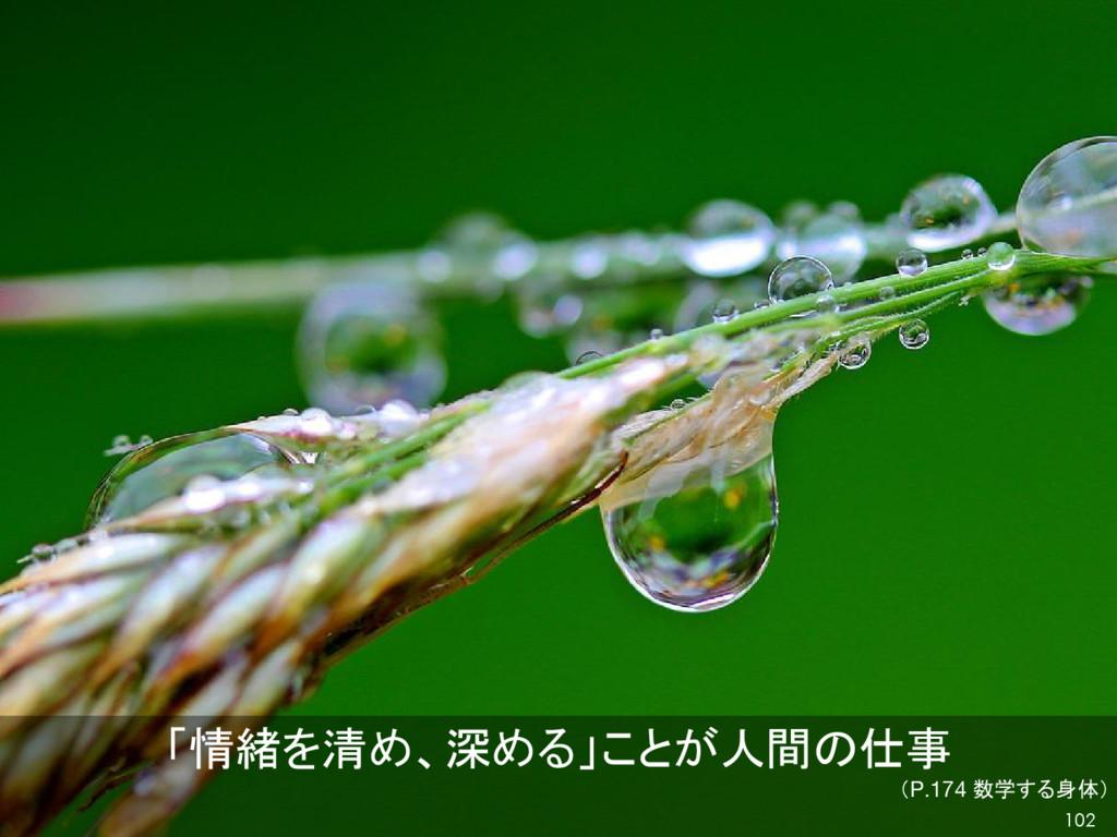 「情緒を清め、深める」ことが人間の仕事 (P.174 数学する身体) 102