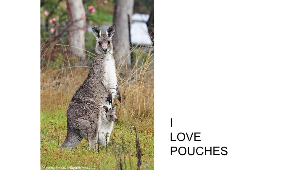 I LOVE POUCHES Photo by Fir0002/Flagstaffotos /...