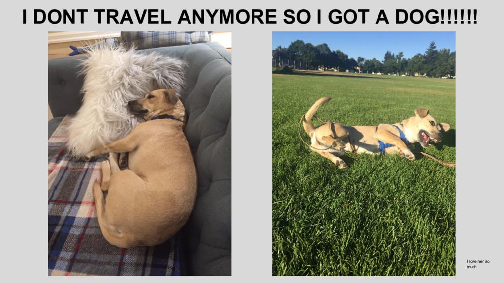 I DONT TRAVEL ANYMORE SO I GOT A DOG!!!!!! I lo...