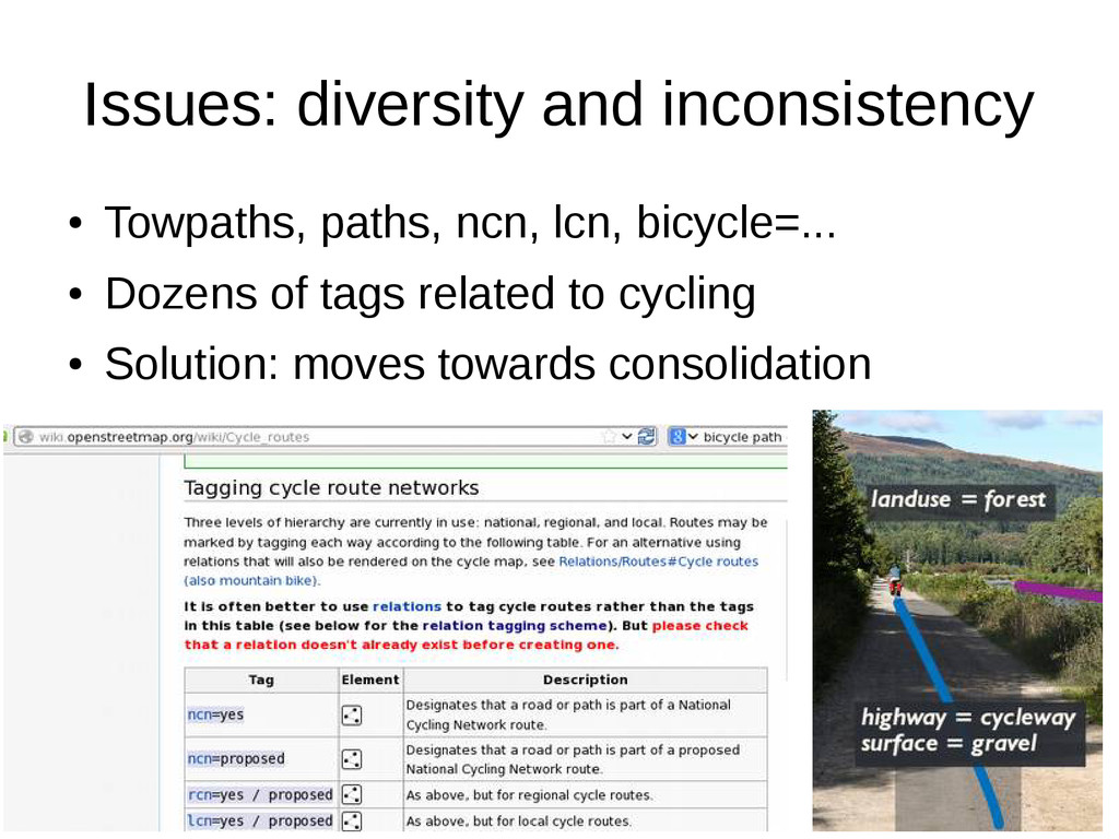 13 Issues: diversity and inconsistency ● Towpat...