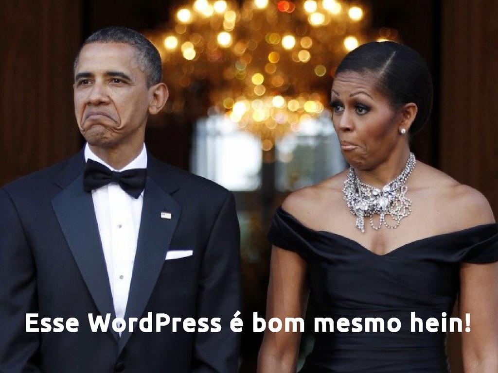 Esse WordPress é bom mesmo hein!