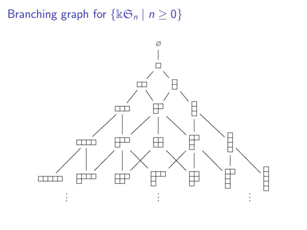 Branching graph for {kSn | n ≥ 0} ∅ . . . . . ....