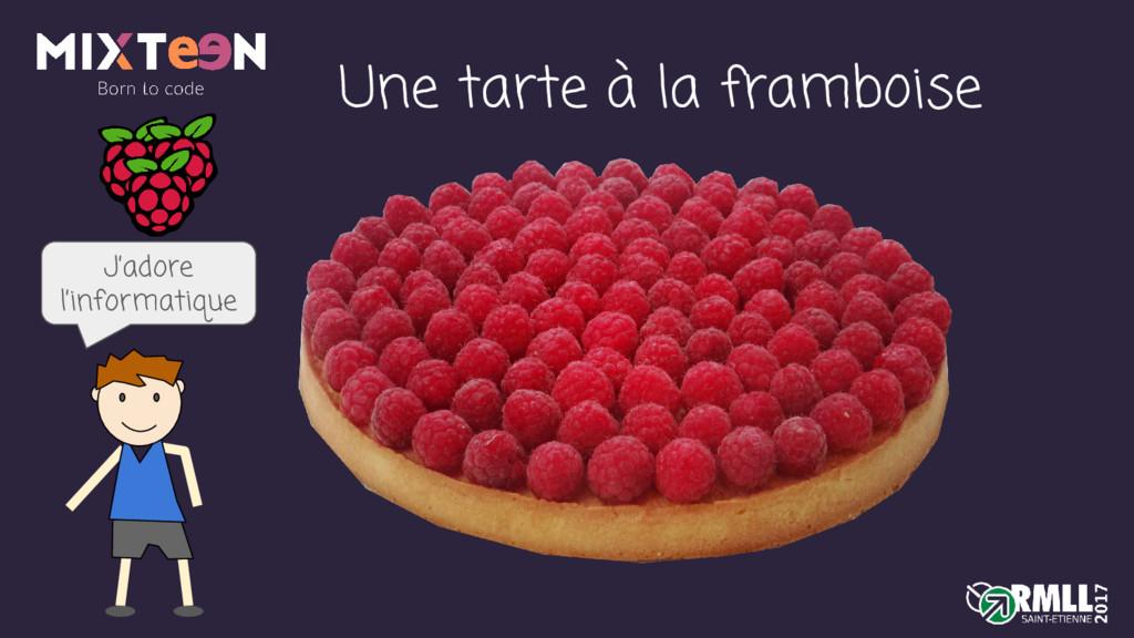 Une tarte à la framboise J'adore l'informatique
