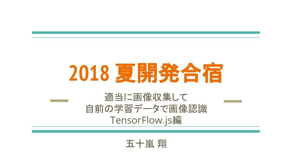 2018 夏開発合宿 適当に画像収集して 自前の学習データで画像認識 TensorFlow.j...