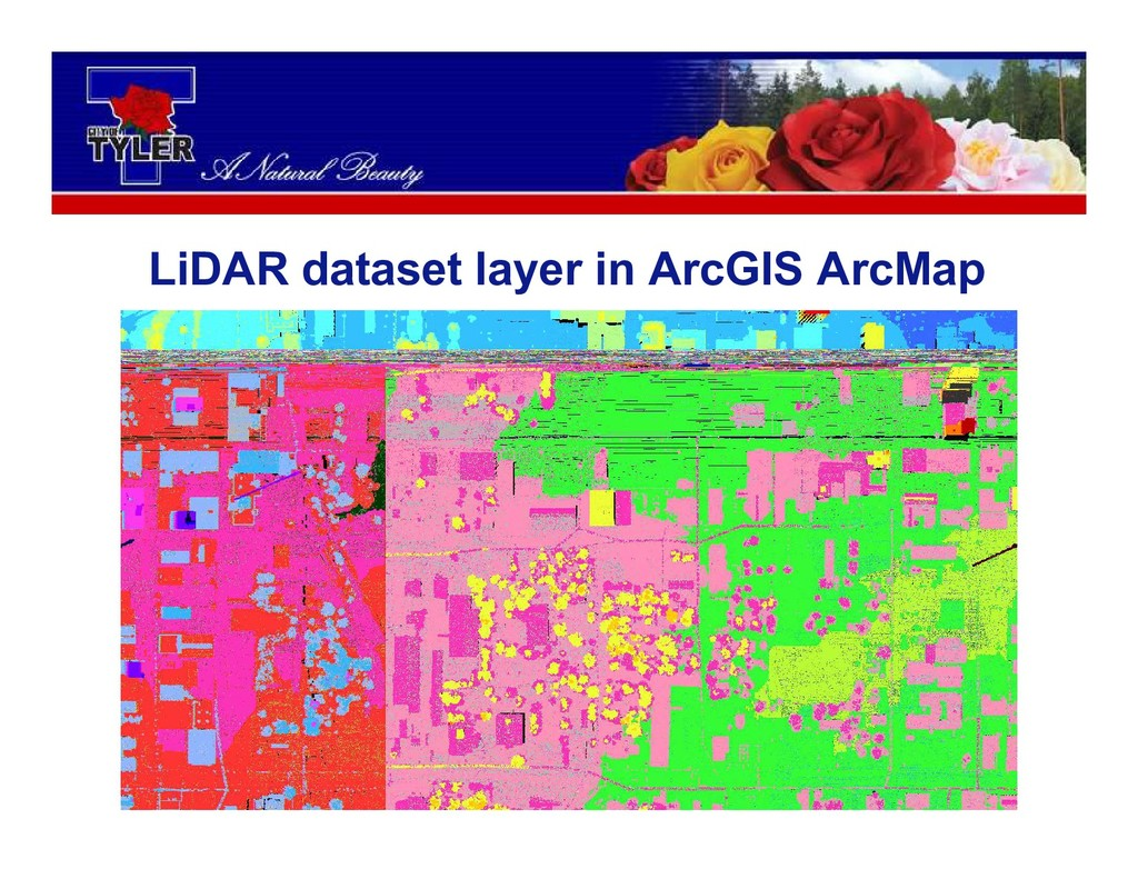 LiDAR dataset layer in ArcGIS ArcMap