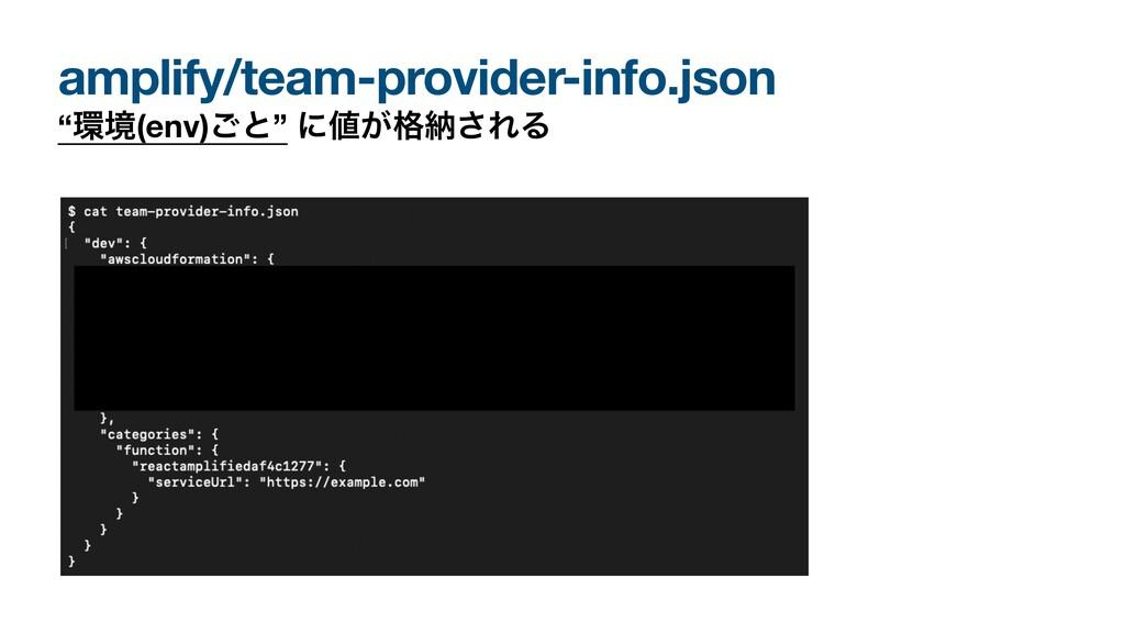 "amplify/team-provider-info.json ""ڥ(env)͝ͱ"" ʹ͕..."
