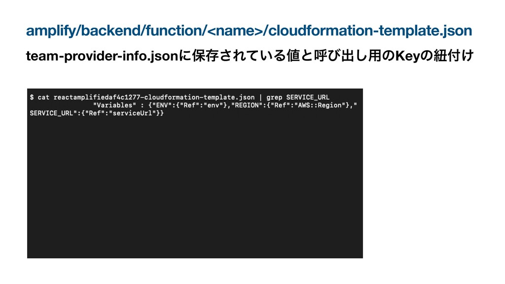 amplify/backend/function/<name>/cloudformation-...