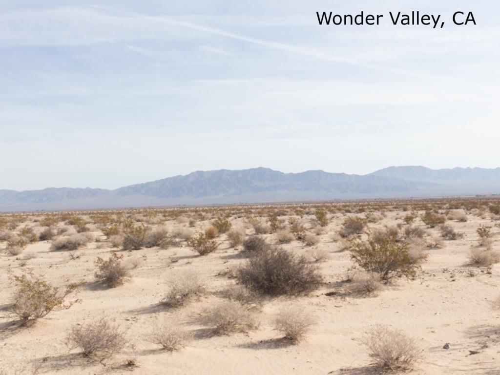 Wonder Valley, CA