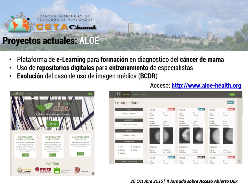 • Plataforma de e-Learning para formación en di...