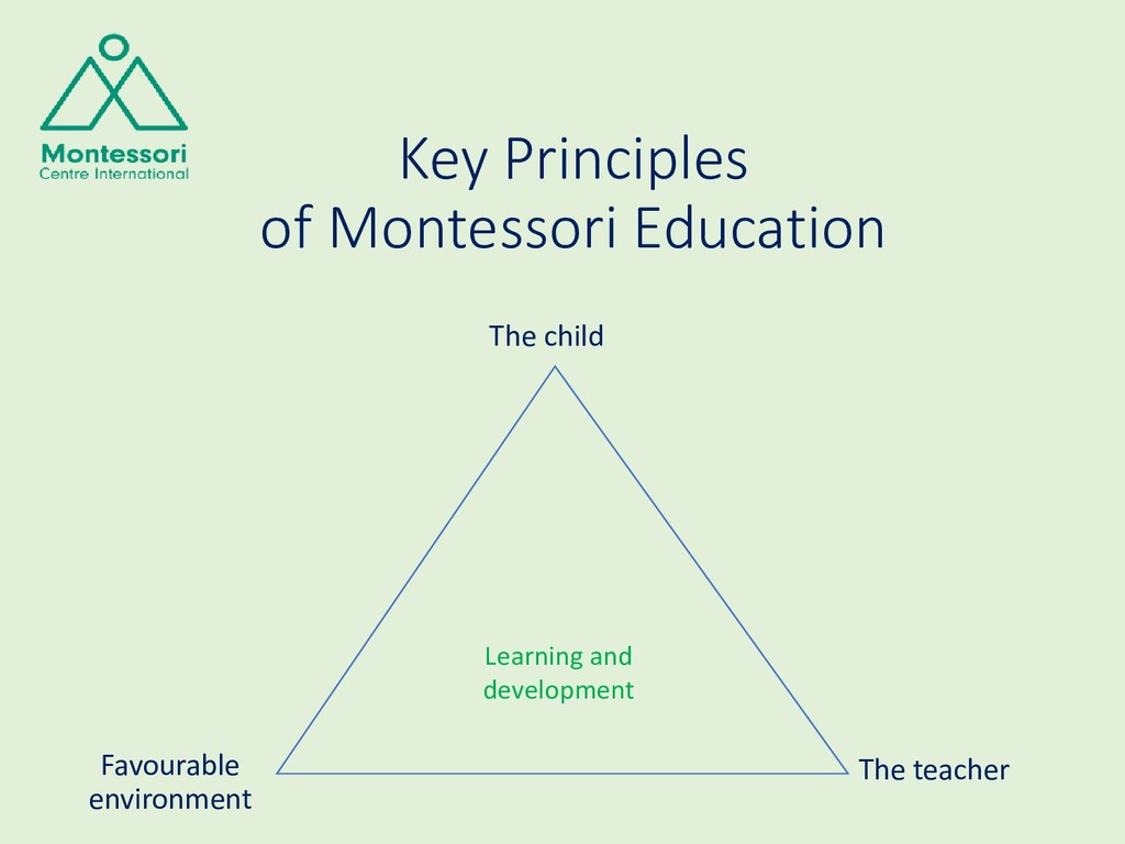 Key Principles of Montessori Education The chil...