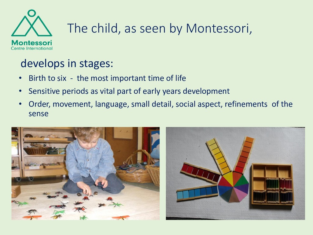 The child, as seen by Montessori, develops in s...