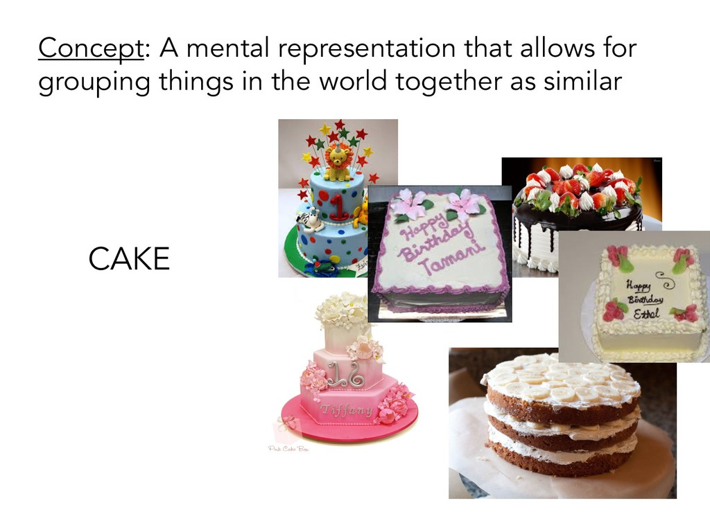 CAKE Concept: A mental representation that allo...
