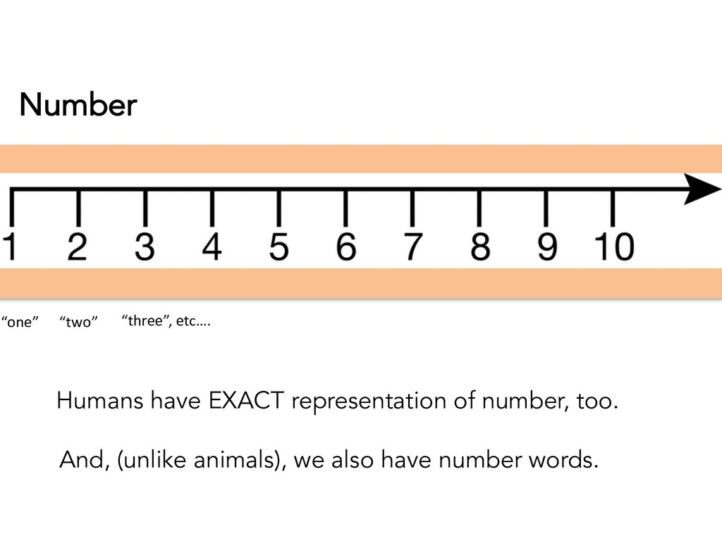 Number Humans have EXACT representation of numb...
