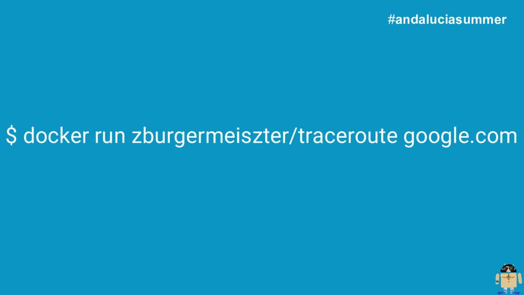 $ docker run zburgermeiszter/traceroute google....