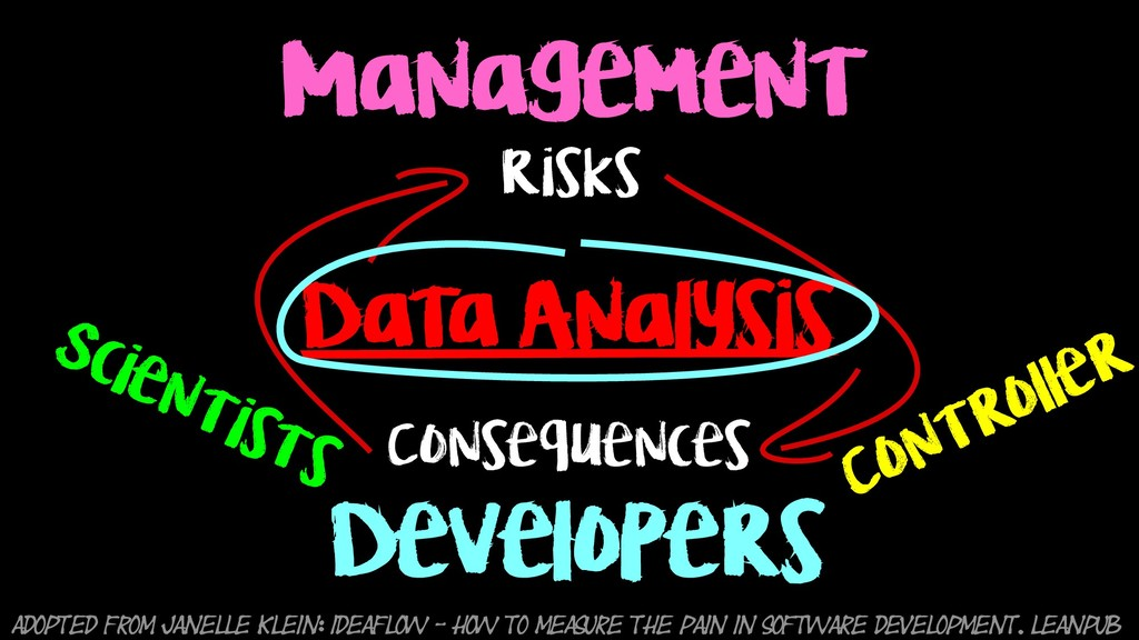 Management Developers Risks Consequences Adopte...