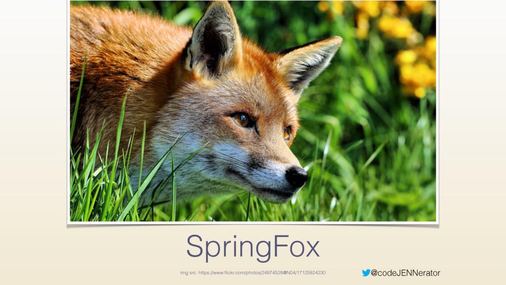 @codeJENNerator SpringFox img src: https://www....