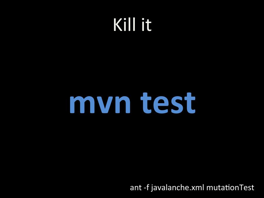 mvn test  ant -‐f javalanche.xml...