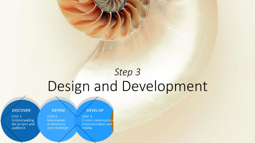 Step 3 Design and Development