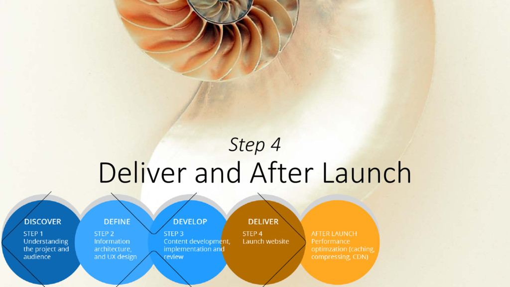Step 4 Deliver and After Launch
