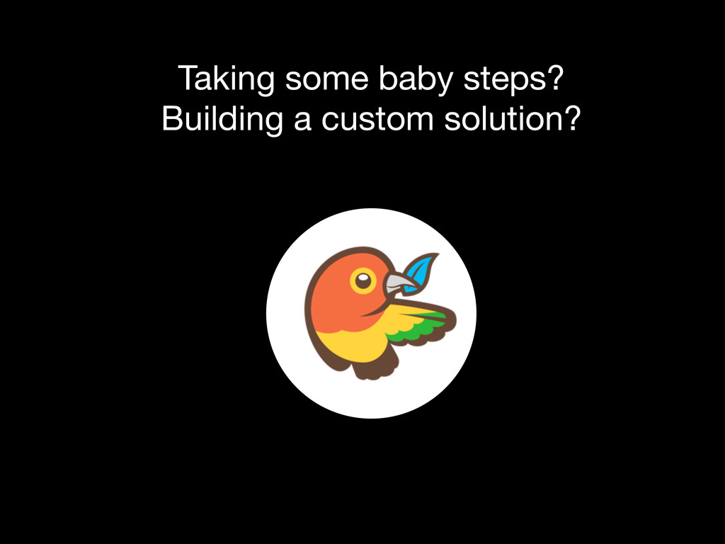 Taking some baby steps? Building a custom solut...