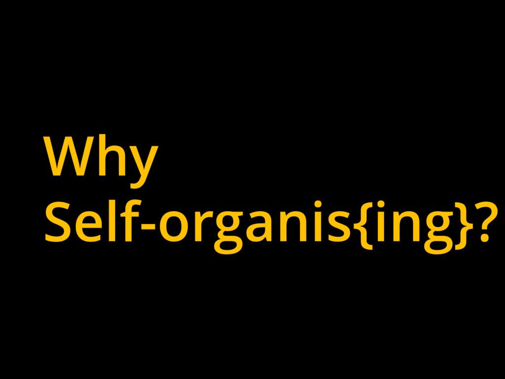 Why Self-organis{ing}?