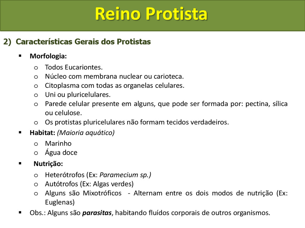 Reino Protista 2) Características Gerais dos Pr...