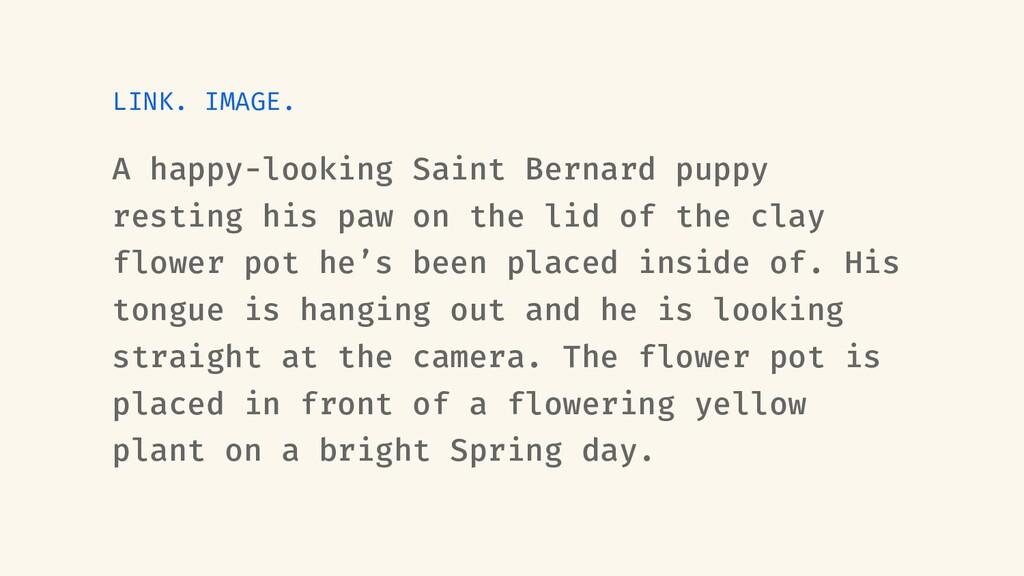 LINK. IMAGE. A happy-looking Saint Bernard pupp...
